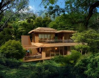 森林度假别墅茅草屋顶