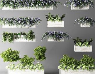 北欧绿植盆栽3d
