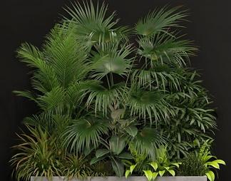 现代绿植盆栽3d