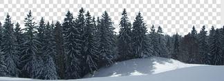 雪景树林贴图