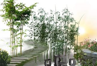 竹子石凳子组合