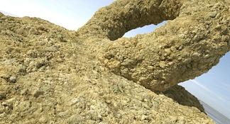地面泥土材质