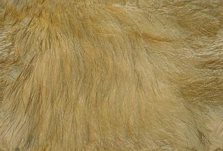 皮革质皮革 (76)