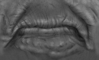 人体皮肤器官