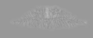 Total Textures Vol 04bumphuman_misc_facialhmif