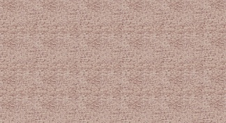 单色的地毯