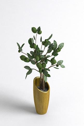 北欧现代室内盆栽