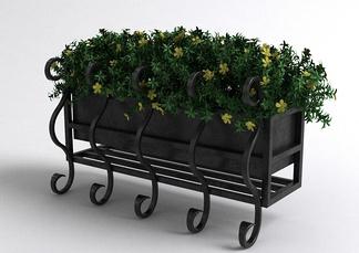 现代户外花草
