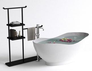 现代浴缸浴架组合