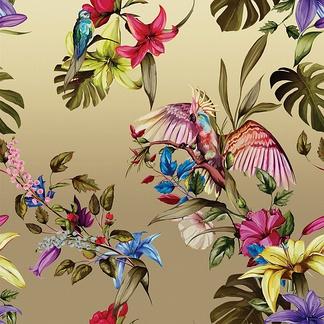 彩色花鸟手绘墙贴图