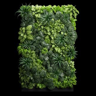 植物装饰组合