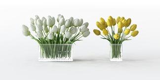 现代花瓶花卉郁金香组合
