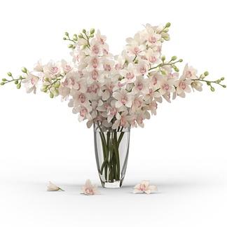 现代玻璃花瓶花艺