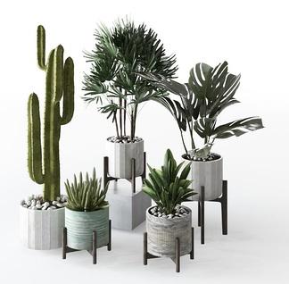现代轻奢绿植盆栽组合