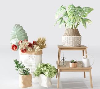 北欧绿植盆栽组合3D模型